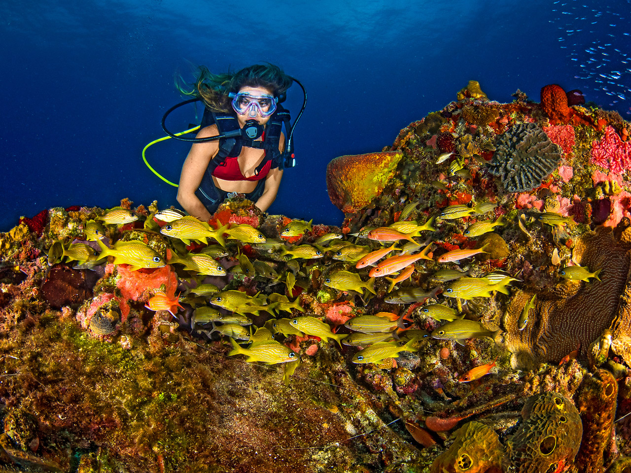 As belezas naturais da Jamaica, dentro e fora d'água, fizeram Karina Oliani retornar à ilha. | foto: Kadu Pinheiro | Jamaica Experience
