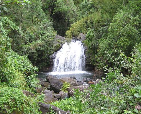As cadeias montanhosas fornecem mais de 40% da água consumida pelos jamaicanos | foto: reprodução internet